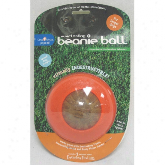 Starmar kBeanie Dog Ball Toy In Orange