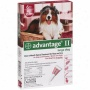 Advantage Ii Flea And Lice Local Treatment For Dosg 21-55 Lbs, 6ct