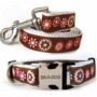Diva-dog 8903570 Gaarden Party Xs/s Collar And Three  Metal/plastic Buckle