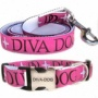 Diva-dog 8904114 Monogram Xs/s Collar And Leash Metal/plastic Buckle
