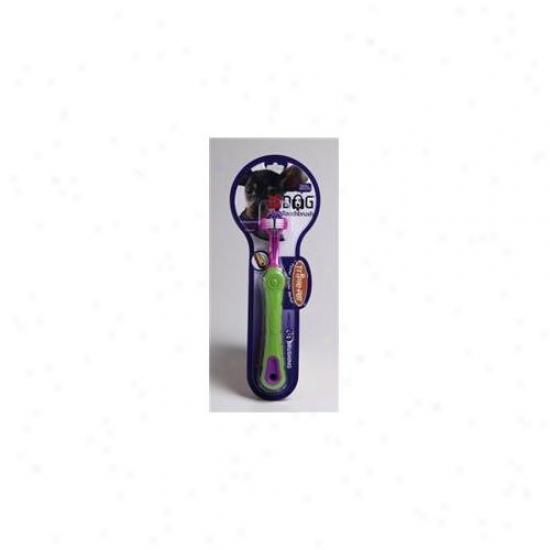 Triple Favorite Psb12dspmc Ezdog Toothbrush Small Breeds
