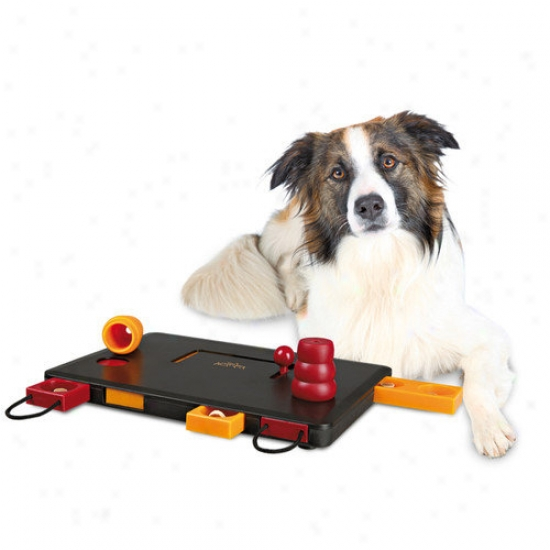 Trixie Pet Products Move-two-win Dog Activity Game