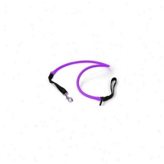 Wackywalk'r Wspur - Walkr - Small - Fluorescent Purple