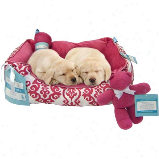 Waverly 3-piece Pet Gift Set