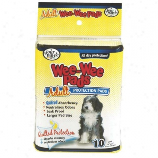 Wee Wee Pads For Adult Dog In White