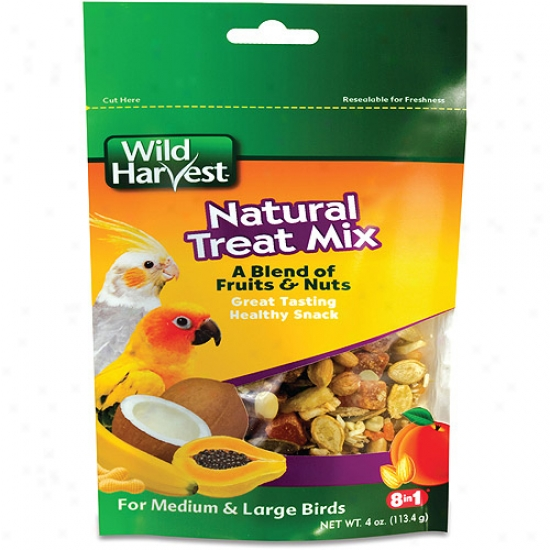 Wild Harvest Natural Treat Mix For Medium &am;; Large Birds, 4 Oz