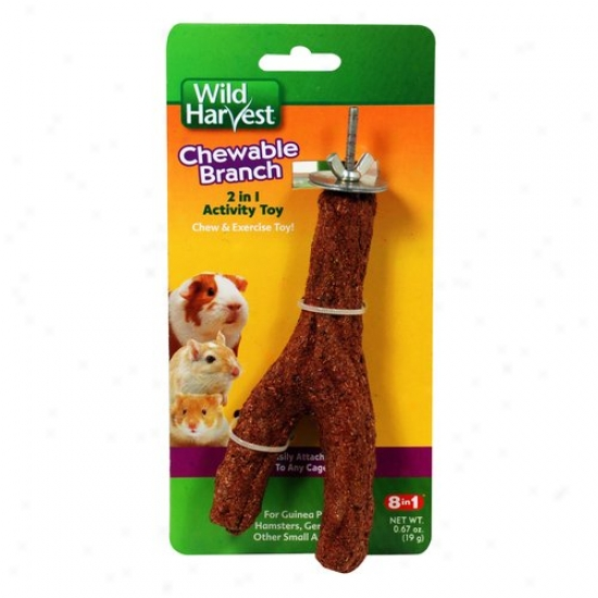 Wild Harvest Small Animal Edible Branch, 1dt