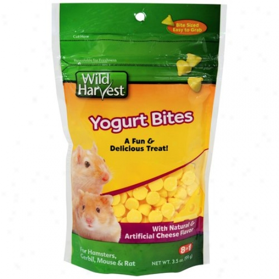 Wild Harvest Yogurt Bites For Hamsters, Gerbils, Mouse And Rat, Cheese Flavor