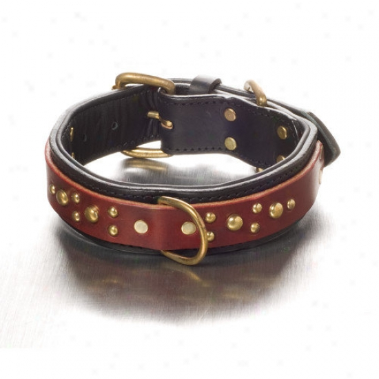 Woofwerks Maggie Overlayy Dog Collar