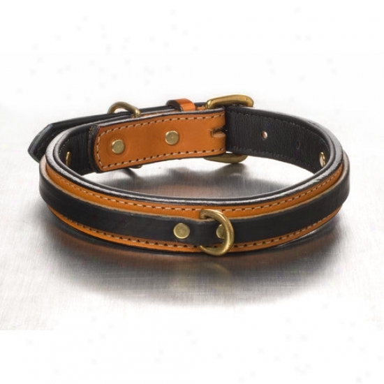 Woofwerks Tucker Overlay Dog Collar