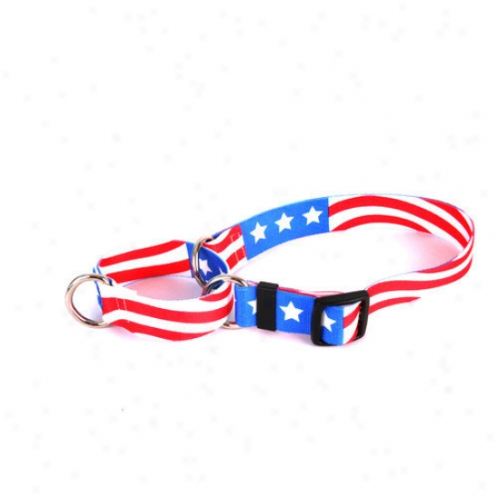 Yelloe Dog Design Americana aMrtingzle Collar