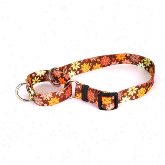 Yellow Dog Design Autumn Flowers Martingale Collar
