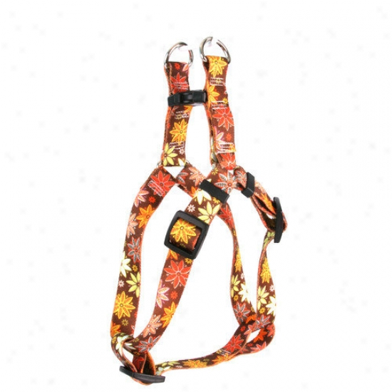Yellow Dog Design Autumn Flowers Step-in Harness