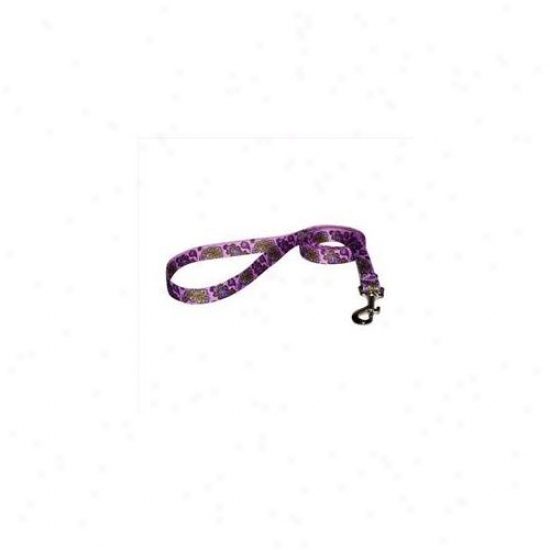 Yellow Dog Design Bhpp105ld 3/4 Inch X 60 Inch Bohemian Paisley Purple Lead