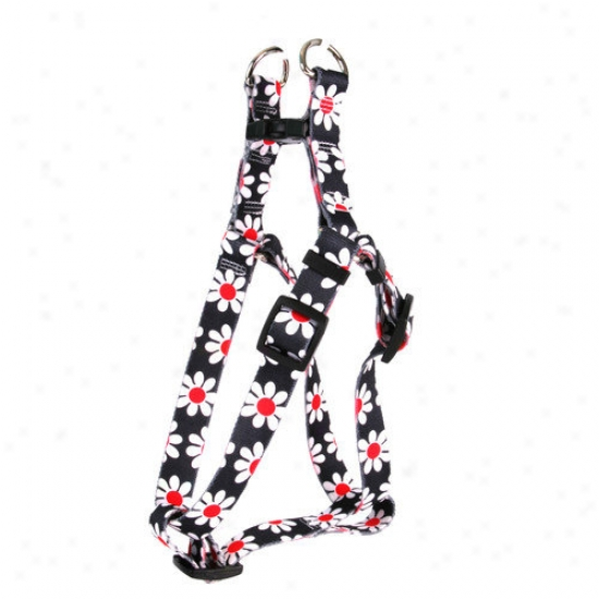 Golden Dog Design Black Daisy Step-in Harness