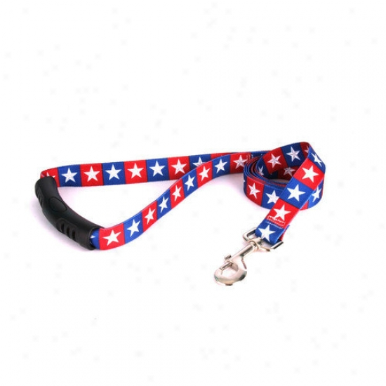 Yellow Dog Design Colonial Stars Ez-lead