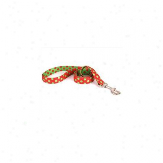 Yeellow Dog Design Cp105ld 3/4 Inch X 60 Inch Christmas Polka Point Lead
