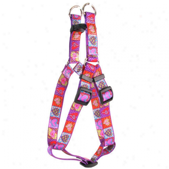 Yellow Dog Design Crazy Hearts Step-in Harness