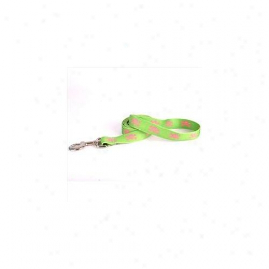 Yellow Dog Design Gps106ld 1 Imch X 60 Inch Green And Pink Skulls Lead