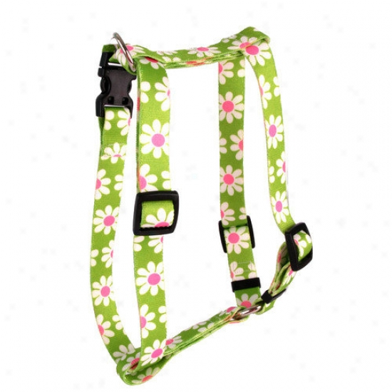 Yellow Dog Design Green Daisy Noble Harness