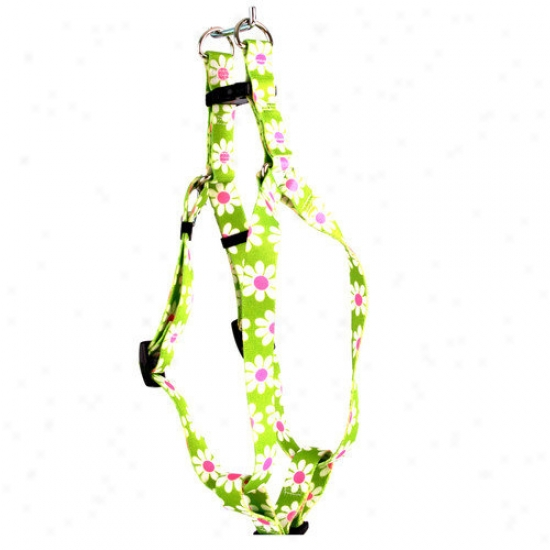 Yellow Dog Purpose Green Daisy Step-in Accoutrements