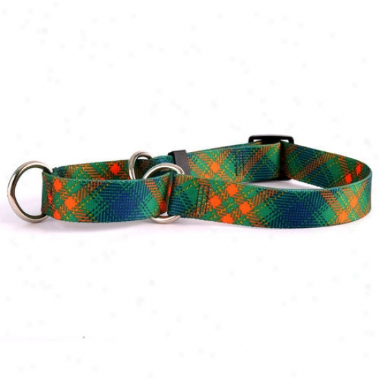 Ysllow Dog Design Green Kilt Martingale Collar