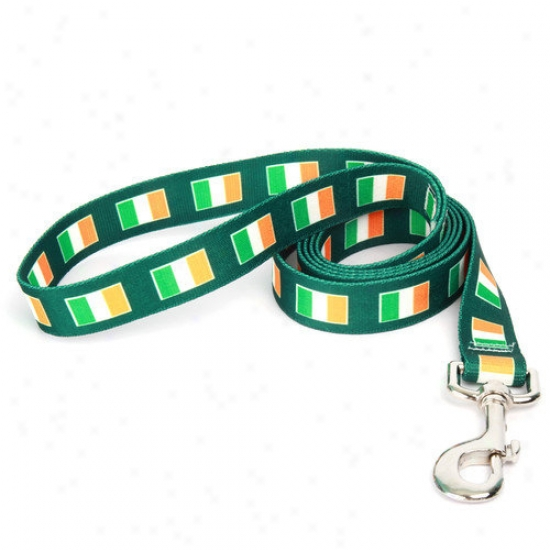 Golden Dog Design Irish Flag Lead