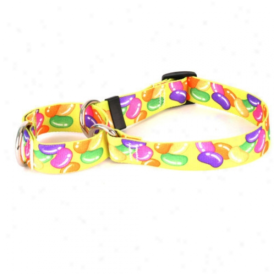 Yellow Dog Design Jelly Bans Martingale Collar