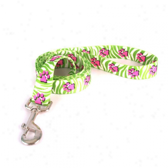 Yellow Dog Design Jungle Paws Lead