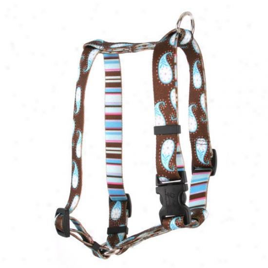 Yellow Dog Design Paisley Roman Harness