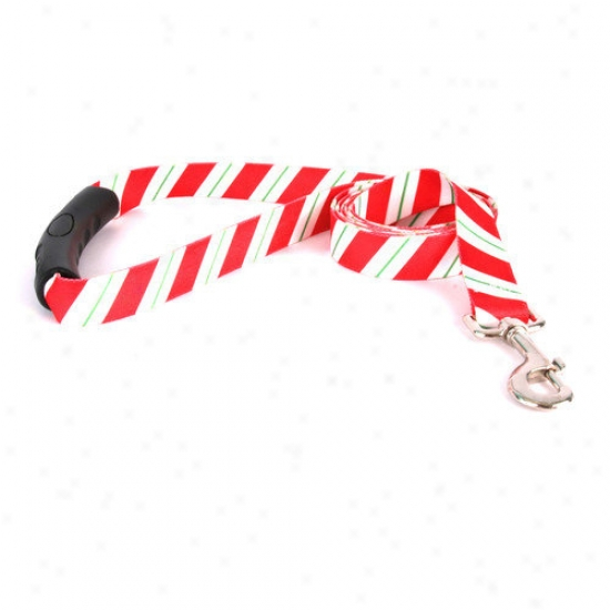 Golden Dog Design Peppermint Stick Ez-lead