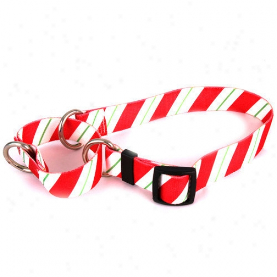 Yellow Dog Contrivance Peppermint Stick Martingale Collar