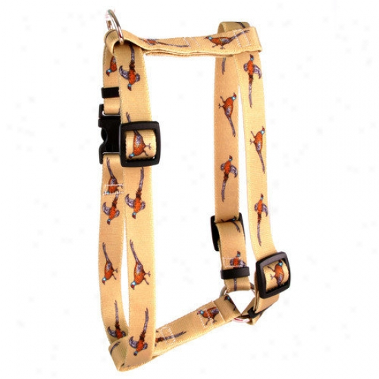 Yellow Dog Design Pheasants Roman Harness