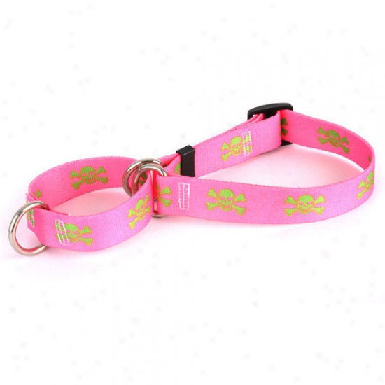 Yellow Dog Design Pink/green Skulls Martingale Collar