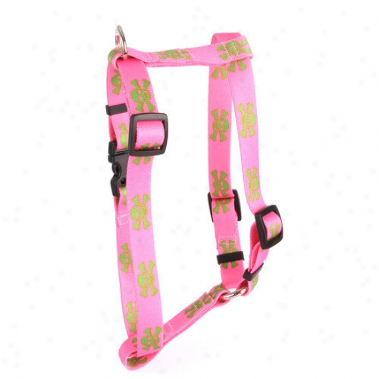 Yellow Dog Desig Pink/green Skullq Roman Harness