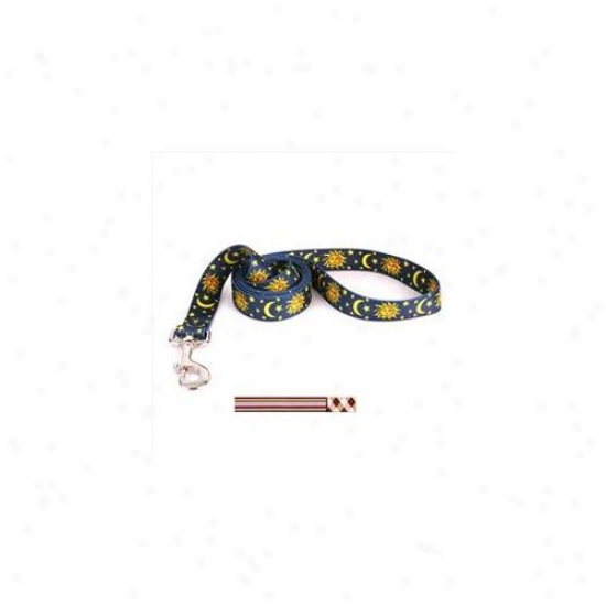 Yellow Dog Design Pspba106ld 1 Inch X 60 Inch Pink And Brown Stripes With Pink And Brown Argyle Lead