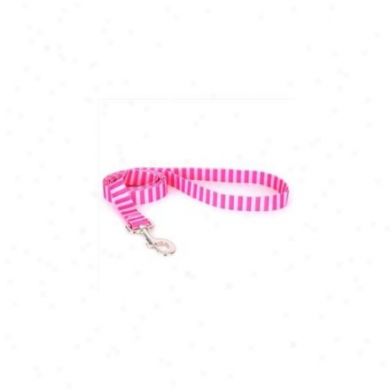 Yellow Dog Design Pst105ld Pink And Pink Stripe Lead - 3/4 Inch X 60 Inch