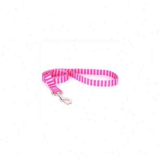 Yelloe Dog Design Pst106ld Pink And Pink Wale Lead - 1 Inch X 60 Inch