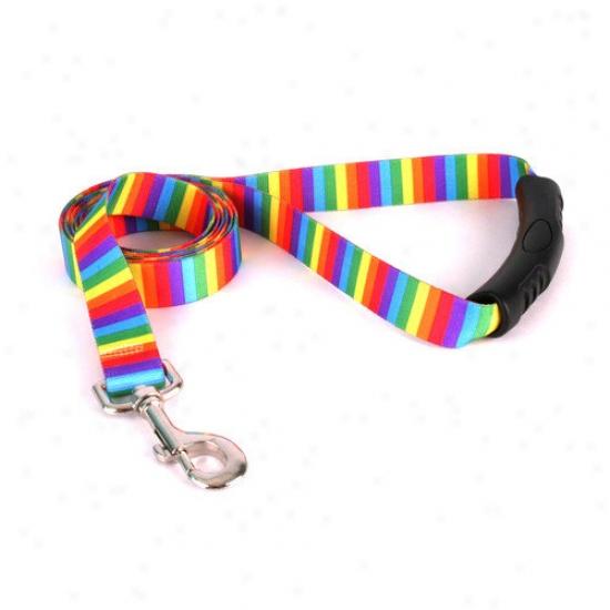 Yellow Dog Design Rainbow Stripes Ez-lead