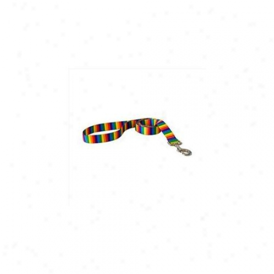 Yellow Dog Design Rs106ld Rainbow Stripes Lead - 1 Inch X 60 Inch