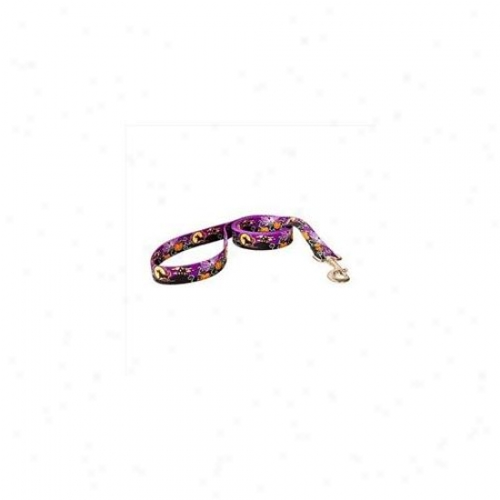 Golden Dog Design Scn104ld 3/8 Inch X 60 Inch Scary Darkness Lead