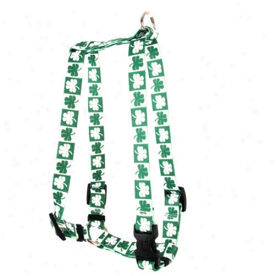 Yellow Dog Design Shamrock Roman Harness