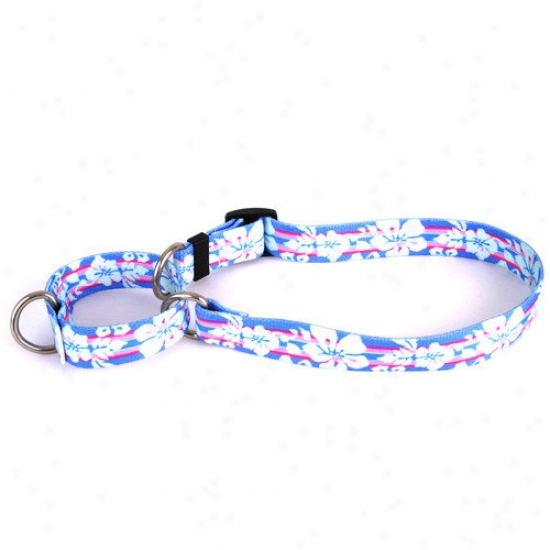 Yellow Dog Intention Tropical Flowers Martingale Collar