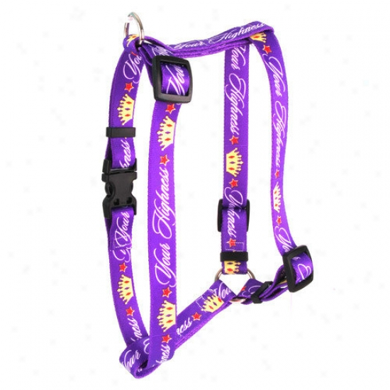 Yellow Dog Design Your Highness Roman Harness
