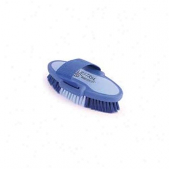 6. 75 Inch Small Knight Sporrt Oval Body Brush - Blue  - 2171-3