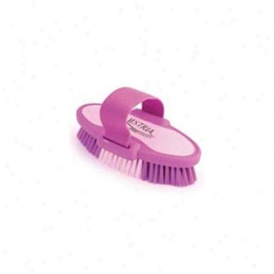 6. 75 Inch Small Equestrian Sport Oval Body Brush - Purple  - 2171-2
