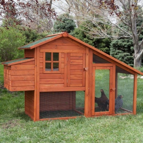 Booemr & George Deluxe Chicken Coop