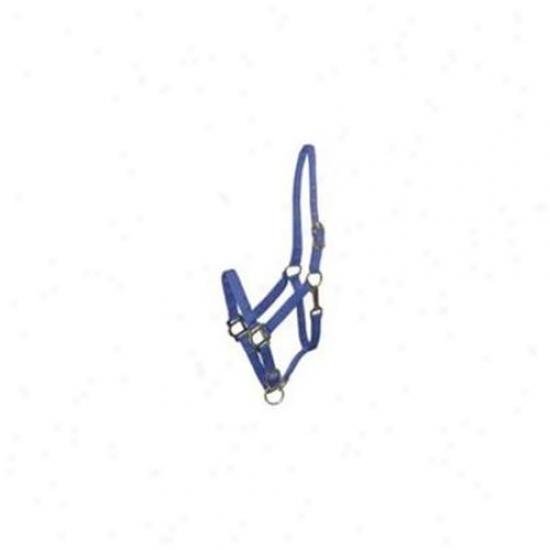 Choice Brands Gatsby Breakaway Halter Blue Horse - 401101-3100-3670