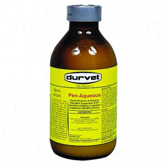 Durvet 01 Yco1600 Pen-aqueous G Procain