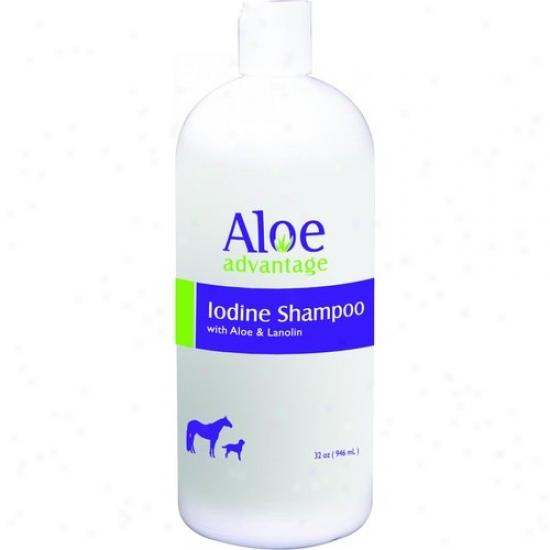 Durvet 077-00343 Aloe Iodine Shampoo